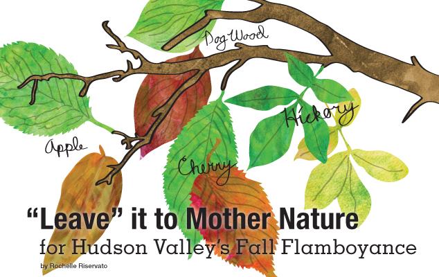 """Leave"" it to Mother Nature for Hudson Valley's Fall Flamboyance"