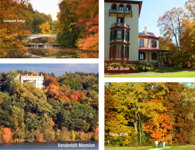Leaf-Peeping Journeys on Land, Air & Sea