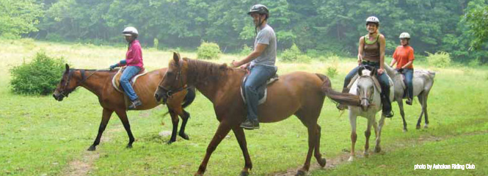 Outdoors Where To Go Horseback Riding Visitvortex