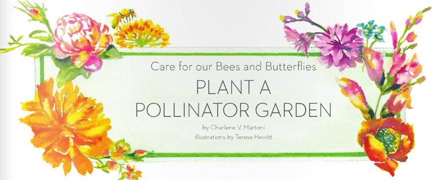SPRING 2016 Plant a Pollinator Garden VISITvortex MAGAZINE