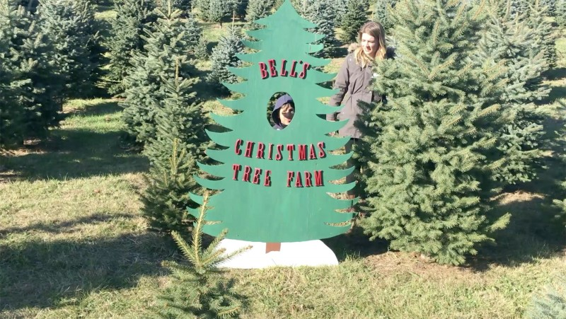 Bell's Christmas Tree Farm