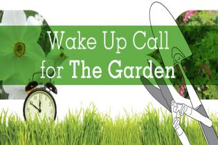 Wake Up Call for THE GARDEN