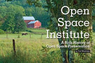 Open Space Institute