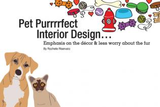 Pet Purrrrfect Interior Design...