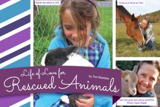 Life of Love for Rescued Animals