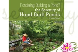Pondering Building a Pond?