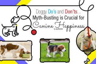 Doggy Do's and Don'ts...
