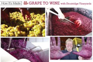 How It's Made: Grape to Wine