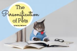 The Personification of Pets