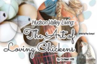 The Art of Loving Chickens