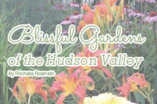 Blissful Gardens
