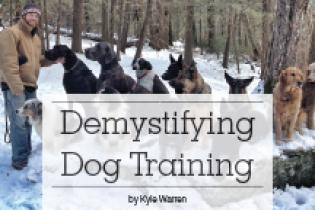 Hudson Valley Dog Training