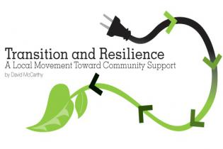 Transition and Resilience