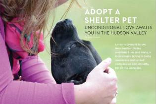 SHELTER PET ADOPTION