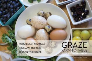 GRAZE FARM-TO-TABLE