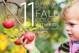 11 FUN WAYS TO SEE THE FALL COLORS