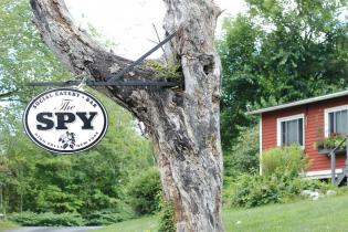 LOCAL EATERY SPOTLIGHT THE SPY