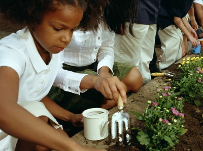 Fertile Minds Gardening Time